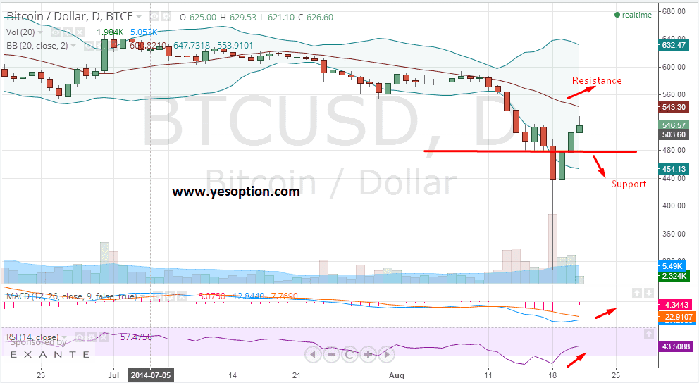 Daily chart for BTC/USD