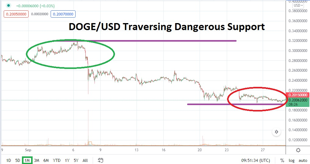 DOGE/USD October 2021 Monthly