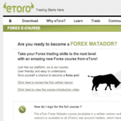 eToro Forex Matador Review