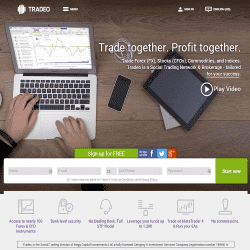 Tradeo forex