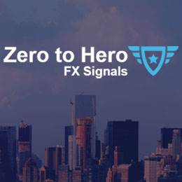 zero to hero review